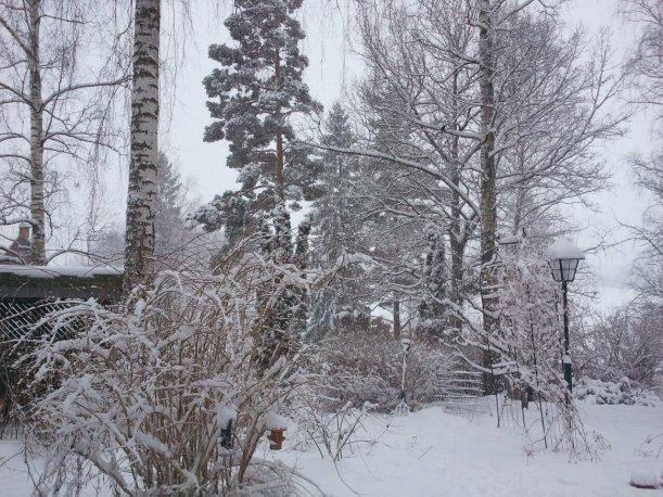 Plötslig vinter 2011-03-18