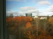 Utsikt från mitt fönster på jobbet
