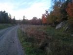 En del av vår promenadväg