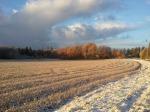 Ljuvlig vinterdag