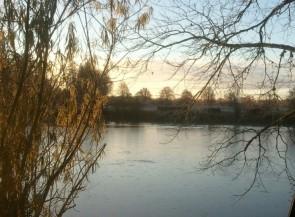 Rakeredsdammen en vacker fredagsmorgon i november
