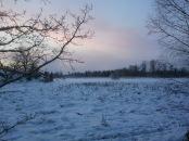Vinterutsikt