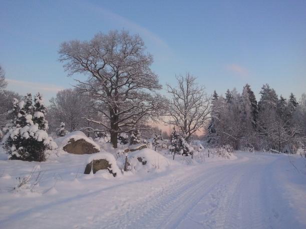 Vår vackra promenadväg