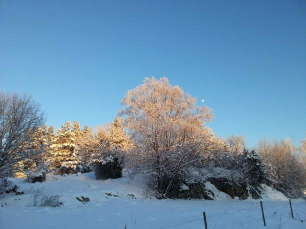 Snörik vinter