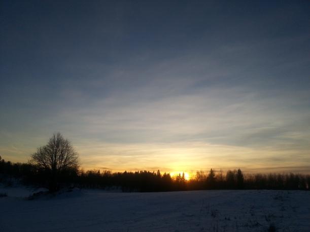Underbart vackert att vara ute och promenera i solnedgången