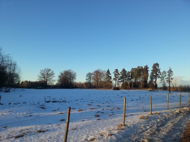 Solig och fin eftermiddagsrunda