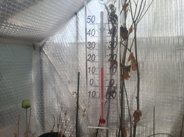 Solen värmer rejält nu, fläkten är inställd på att hålla som lägst 5-6 grader men nu stiger det under soliga dagar