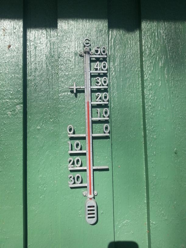 Inte så illa att fika utomhus i sånt här väder!
