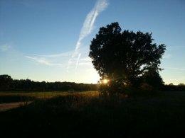 wpid-2013-10-06-17.55.51.jpg