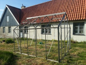 Växthusstommen rengjord