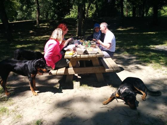 Härligt med picknick!