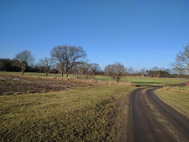 Rena våren, trots att vi bara är i slutet av januari...