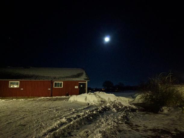 Inte riktigt fullmåne längre (fast det syns inte på fotot, min telefonkamera är bra men inte SÅ bra)